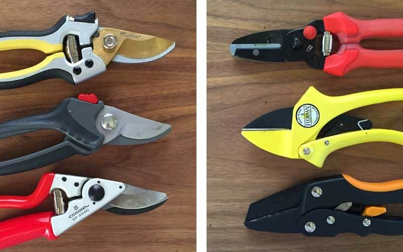 best-pruning-shears
