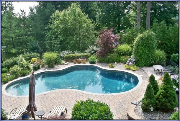 Swimming Pool Landscaping Frisco Lawn Pros