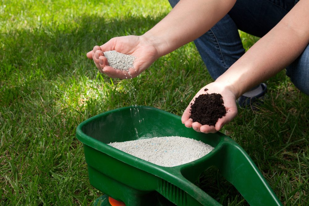 Frisco, Fertilizer, Fertilization, Bermuda Grass, Lawn, Landscaping