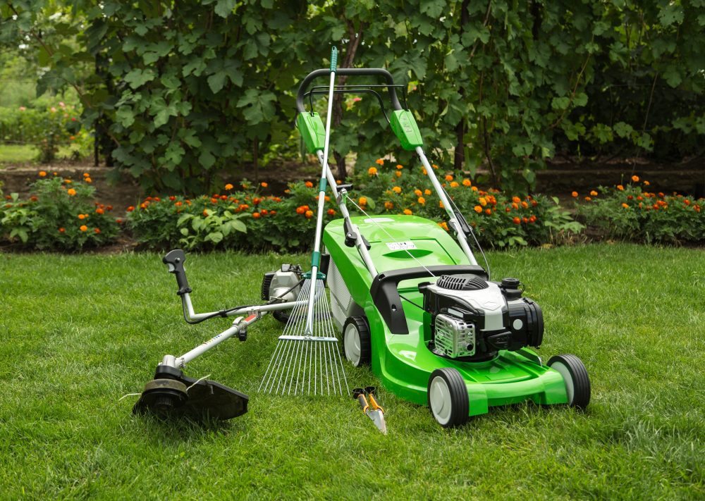 Lawn, Lawn Care, Mowing, Raking, Clearing, Garden, Gardening, Landscaping