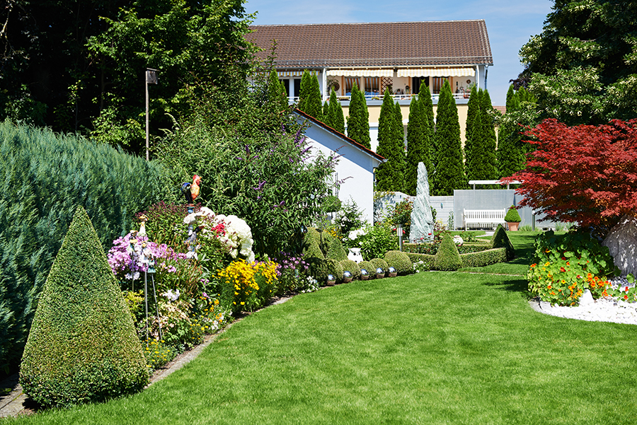 frisco lawn care landscaping